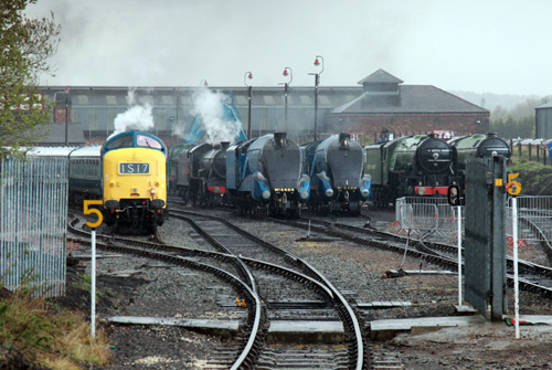 Barrow Hill Fab 4 LNER Loco line up Phil Marsh