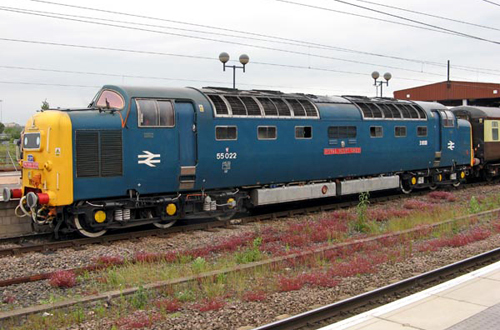 Deltic No. 55022 'Royal Scots Grey' by Paul Bickerdyke