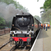 34067 Tangmere by Phil Marsh