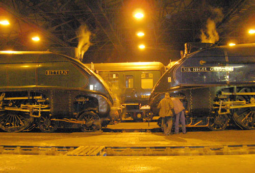 Bittern and Gresley meet up at Southall by Phil Marsh
