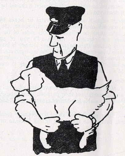 4) How to hold a dog. Courtesy of Phil Marsh.