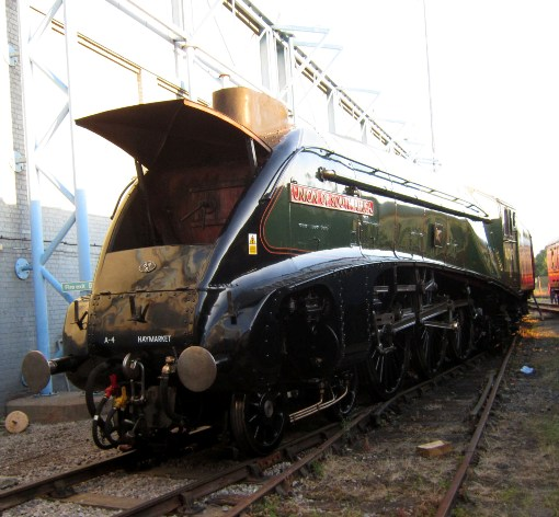 Union of South Africa outside the NRM by Phil Marsh
